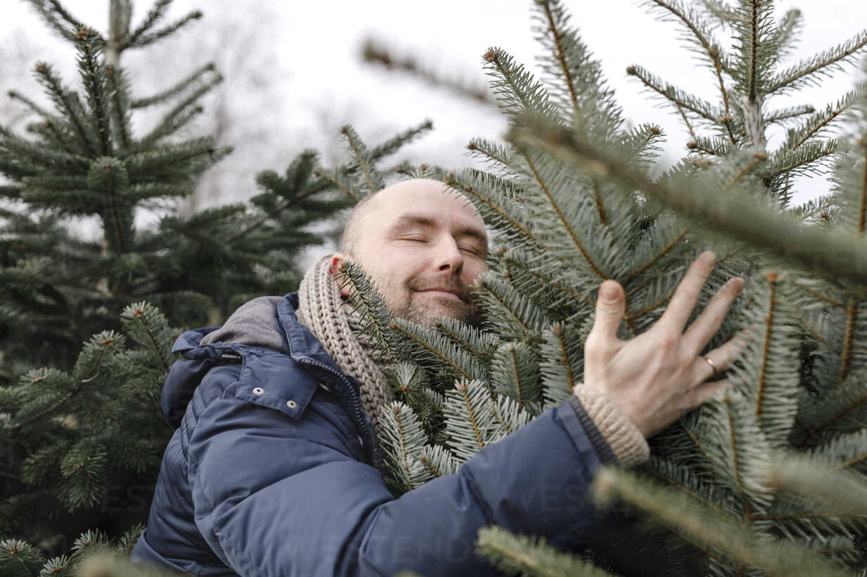 Smiling man hugging Christmas tree on a plantation - KMKF00742 - Katharina Mikhrin/Westend61
