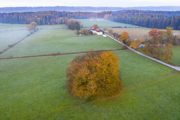 Germany, Bavaria, autumn morning in Schwaigwall near Geretsried, drone view - SIEF08355