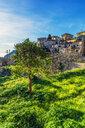 Spain, Baleares, Mallorca, Valldemossa - THAF02449