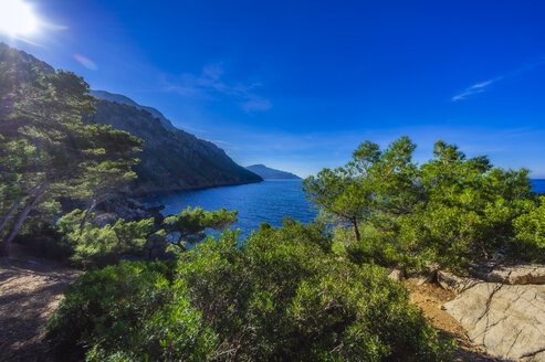 Spain, Baleares, Mallorca, coast near Sa Foradada - THAF02458