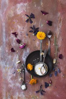 getrocknete Blüten (Ringelblume, Gänseblümchen, Lavendel, Rosenblütenblätter, wilde Malve), Globuli - MYF02070