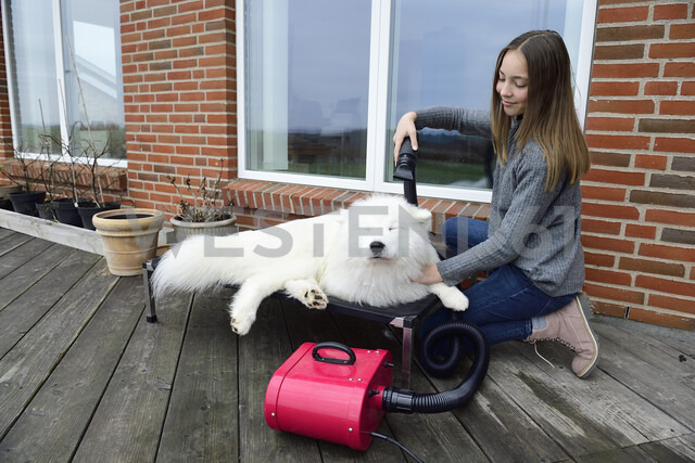 Girl blow-drying white dog on terrace - ECPF00302 - Eyecatcher.pro/Westend61