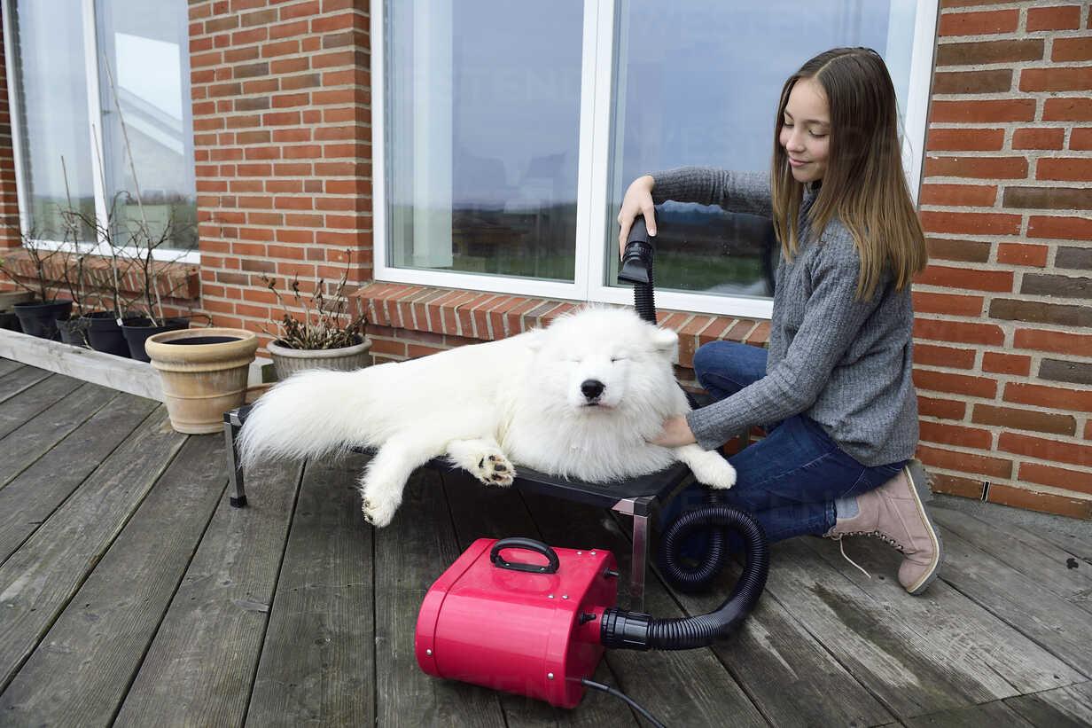 Girl blow-drying white dog on terrace - ECPF00302 - Anne Jensen/Westend61