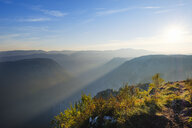 Montenegro, Durmitor National Park, Tara Canyon in morning haze, view from Curevac - SIEF08358