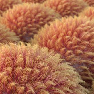Rote Hair Anemonen, 3D Rendering, digital generiert, Anemone, Haare, wuschelig, Kugel, Ball, Muster, abstrakt, Konzept, Idee, Innovation, Kreativität, HIntergrund, Entschleunigung, Inspiration, Individualität, Harmonie, Balance, Vision, Quadratisch, rot, orange, gelb - AHUF00560