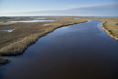 Blackwater National Wildlife Refuge, Cambridge, Maryland, USA.  Blackwater River. Blackwater Refuge is experiencing sea level rise that is flooding this marsh. - BCDF00381