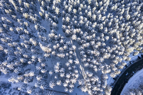 Germany, Hesse, Taunus, Aerial view of road through coniferous forest in winter - AMF06730