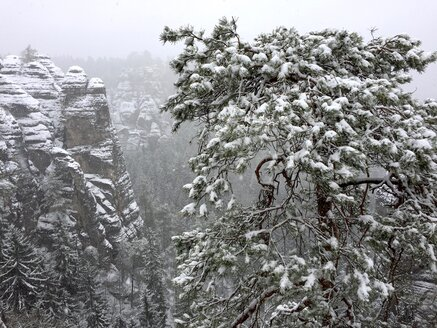 Germany, Saxony, Saxon Switzerland, Bastei area in winter - JTF01178
