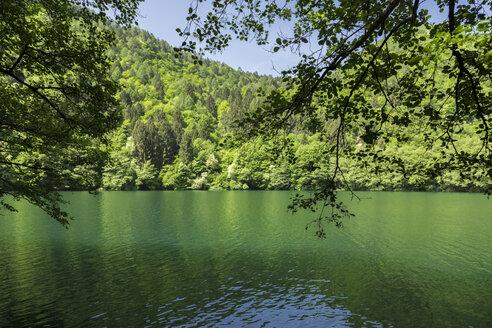 Italy, Trentino Alto-Adige, Lago di Levico on a sunny spring day - FLMF00109