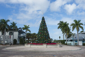 USA, Florida, Key West, Christmas tree - RUNF01006