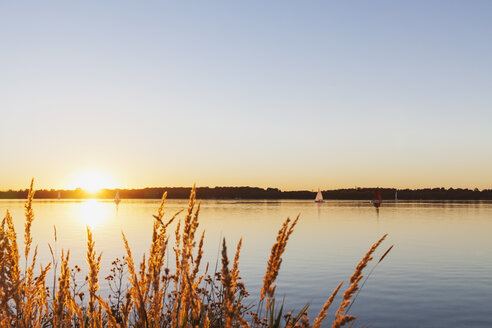 Germany, Saxony, Leipzig, Lake Cospuden at sunset - GWF05838