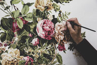 Close up of artist working on painting of pink tea roses, leaves, berries and other flowers. - MINF10261