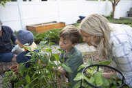 Mother and son gardening - HEROF10578