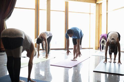 People practicing standing forward bend in yoga class studio - HEROF10873
