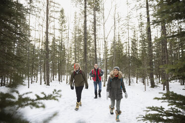 Friends in warm clothing walking in snowy woods - HEROF12172