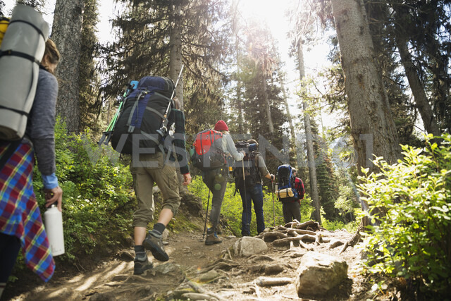 Friends hiking with backpacks and hiking poles on sunny remote trail in woods - HEROF12358 - Hero Images/Westend61
