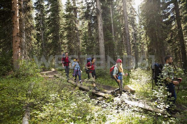 Friends hiking walking along fallen tree in remote woods - HEROF12367