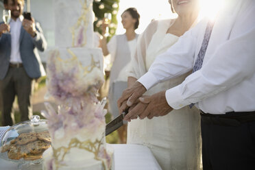 Senior bride and groom cutting wedding cake - HEROF12658