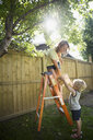 Mother and son with ladder and bushel harvesting apples from tree in sunny backyard - HEROF13441