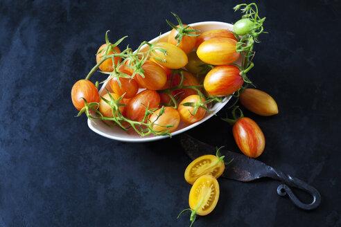 Artisan Blush Tiger Tomaten (Lycopersicon esculentum), Kirschtomate, Cocktailtomate, Cherry Tomato, goldgelb, rosa getönt, weisse Schale, dunkler Untergrund - CSF29257