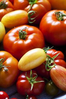 Various sorts of tomatoes, close-up - CSF29269