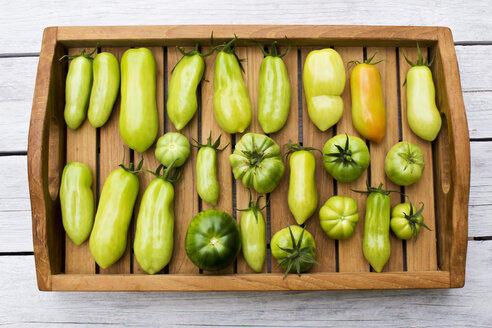 Tray with various tomatoes, stage of ripeness, unripe - CSF29308