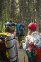Smiling women hiking with backpacks and hiking poles on trail in woods - HEROF13640