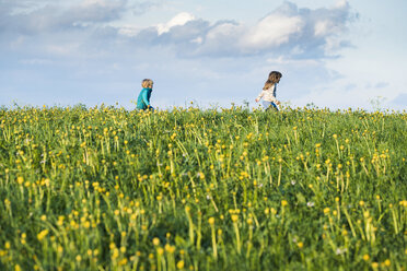Two happy children running over a meadow with dandelions - SBOF01683