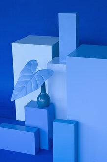 Shades of Blue, verschiedene blaue Quader, blaue Vase mit blauem Blatt, Studio - ASF06292