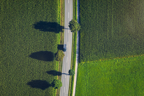 Germany, Chiemgau, country road and field in summer - MMAF00820