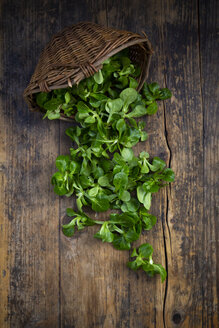 Lamb's lettuce and wickerbasket on wood - LVF07747