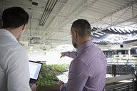 Botanists discussing rooftop garden experiment in laboratory - HEROF17911