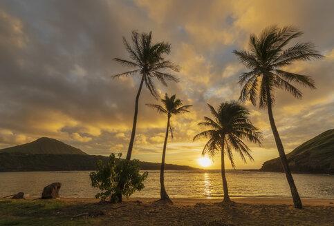 USA, Hawaii, Oahu, Hanauma Bay, dead volcano crater - FOF10275