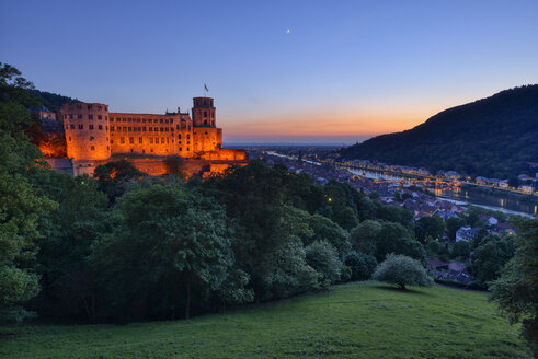 Heidelberg Castle with Neckar River and Old Bridge, Bade. Wurttemberg, Germany - RUEF02090