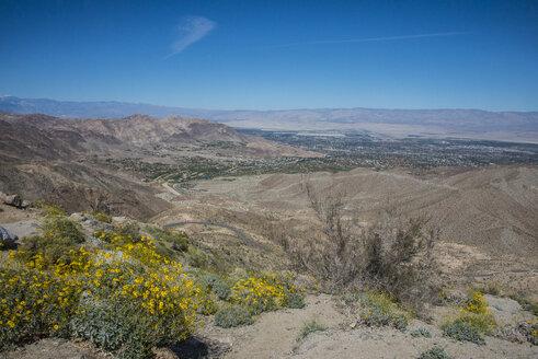 Desert around Palm springs, California,USA - RUNF01106