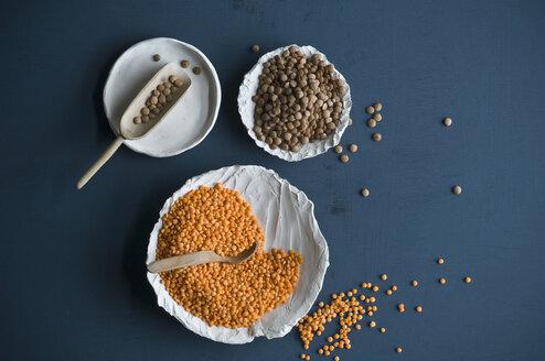 Rote Linsen, braune Tellerlinsen in Schaelchen und auf Loeffel, Eiweisreiche Nahrung, - ASF06299