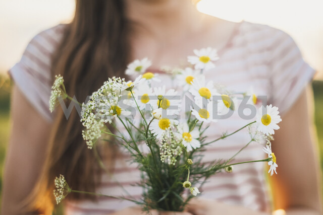 Woman holding bunch of picked white wildflowers, close-up - JSCF00141