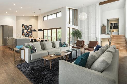Home showcase mid-century modern open plan living room - HEROF20528