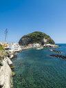 Italy, Campania, Ischia, Forio, - AMF06775