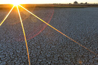 Spain, Reserva natural de Lagunas de Villafafila, dried lake bottom at sunrise - DSGF01830