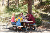 Five young adult friends chatting at park picnic table, Los Angeles, California, USA - CUF48696