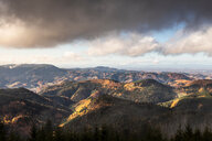 View into black forest, Baiersbronn, Baden-Wurttemberg, Germany - CUF48792
