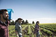 Farmers walking along green crops on sunny farm - HEROF20712