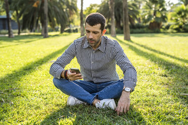 Man sitting on meadow in city park looking at cell phone - GIOF05765
