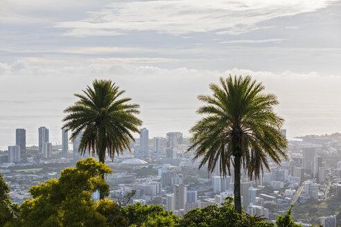 USA, Hawaii, Oahu, Puu Ualakaa State Park, View from Tantalus Lookout to Honolulu, Palms - FOF10292