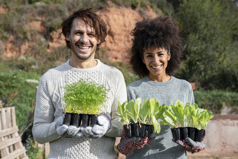 Happy couple holding lettuce seedlings in a vegetable garden - GEMF02727