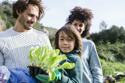 Happy family holding lettuce seedlings in a vegetable garden - GEMF02730