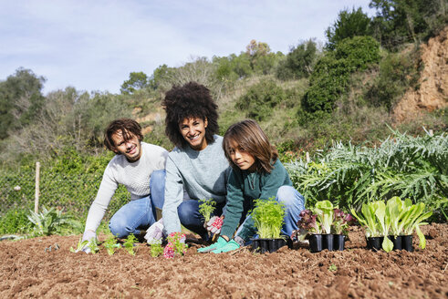 Family planting lettuce seedlings in vegetable garden - GEMF02739
