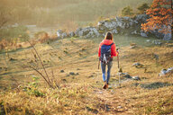 Rear view of woman walking on trail on a hiking trip in the mountains - BSZF00982