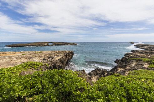 USA, Hawaii, Oahu, Laie Point, Kukuihoolua Island - FOF10357